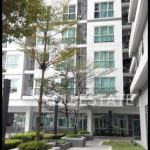 For sale CU Terrace |2 bed 55sqm on 1x floor new room | ระเบียงจามจุรี